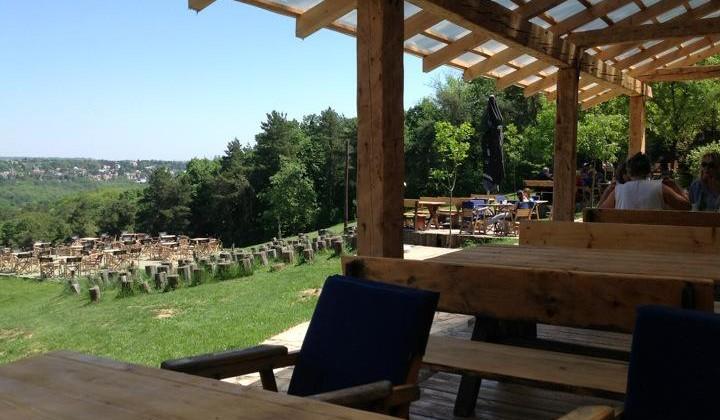 Restoran Aleksandar Club Ski Staza Banovo Brdo